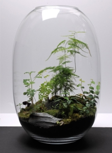Roosts-Terrarium-Table-Lamp-3